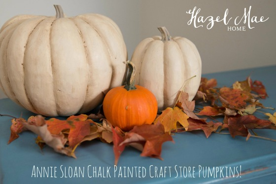 CraftStorePumpkins